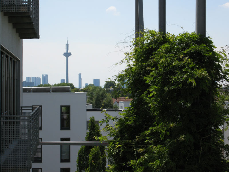 Skyline Frankfurt | Ausblick Maxpert Education Center